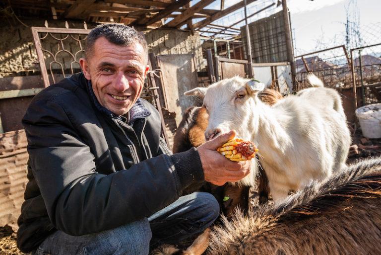 Paysan serbe fier de ses chèvres